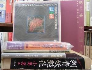 book718