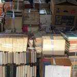 文学全集や古い文学書、限定本、豆本など文学関係の古書を大量出張買取させて頂きました